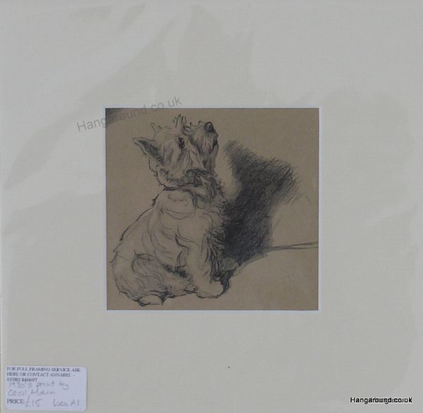 Westie  sitting  1930's print by Cecil Aldin - Wes A4